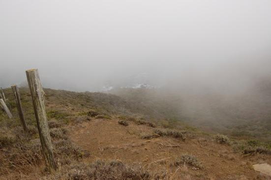 Fence. Fog. Ocean.