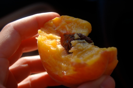 Life's a peach