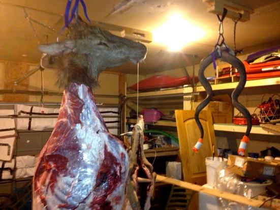 Hanging Elk
