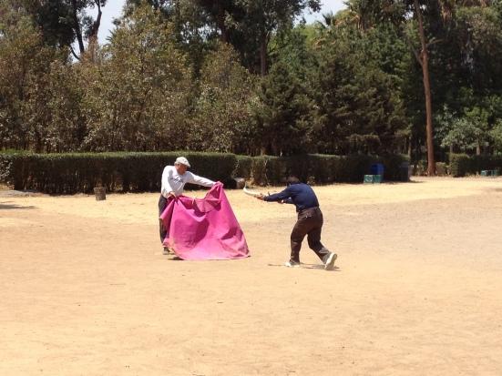 Matador training