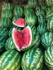 Watermelon. In season and everywhere.